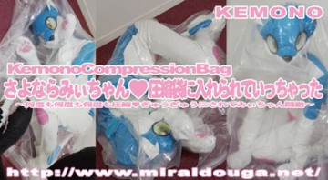 Zentai had went placed in the latest Saya a Ramyi chan ♥ compression bag